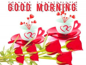 Good Morning  Profile Images Wallpaper Pics For Whatsapp Download