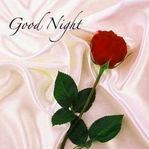 good-night-wish-red-rose-pic