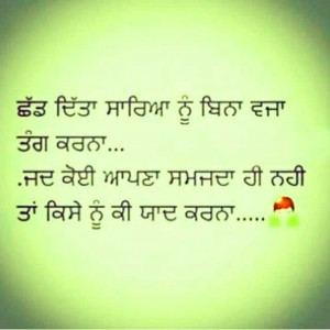 59+ Punjabi Status For Whatsapp