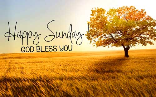 Happy Sunday Quotes Wallpaper