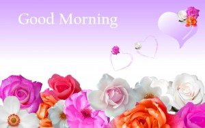 Download Good Morning Flowers Images Wallpaper Pics Download