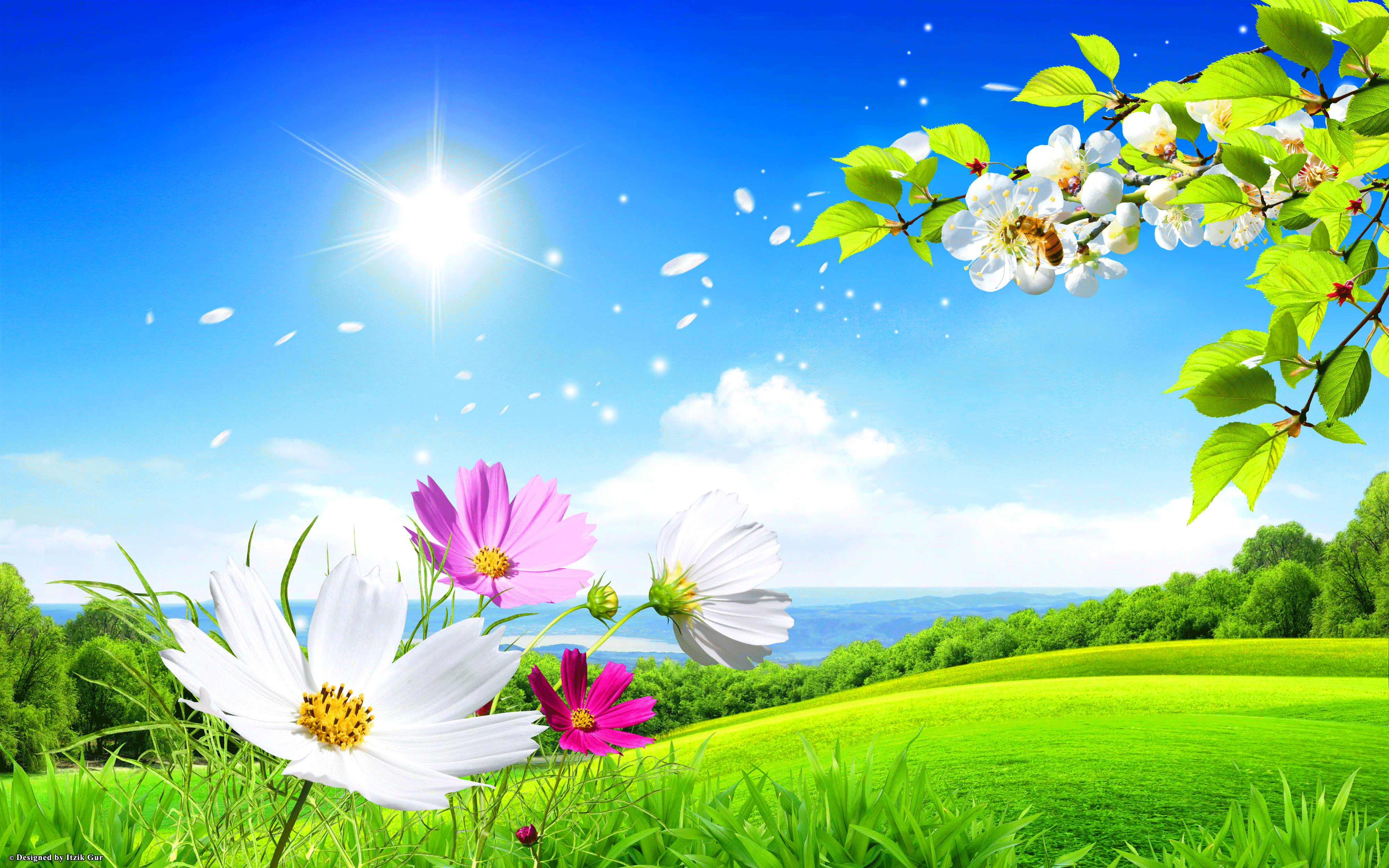 spring wallpaper hd pc