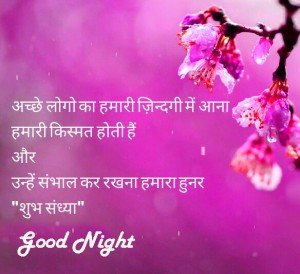 313 hindi shayari good night images pictures for whatsapp hindi good night photo download voltagebd Choice Image