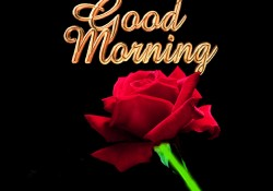 Good-Morning-Wallpaper-3d-w