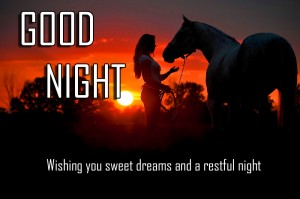 Good Night Images Photo HD Free Download