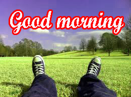 Different Good Morning Images Photo Pics HD Download