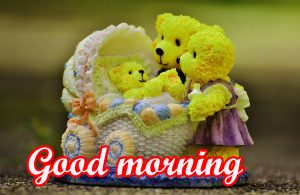 Funny Sunday Good Morning Images Pictures HD Download