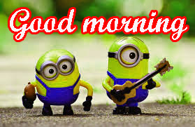 Funny Sunday Good Morning Images Photo HD Download