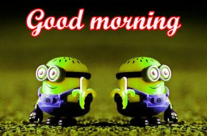 Funny Sunday Good Morning Images Photo Free Download