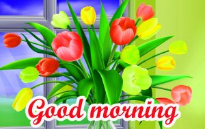 Good Morning All images Pictures Free Download