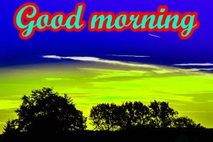 Good Morning Nice Pic Images Pics HD
