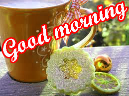 Sweet Good Morning Pics Photo HD