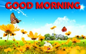 Good Morning Wishes Images Wallpaper Pictures Pics HD Download