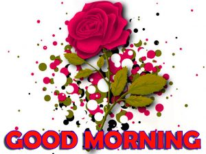 Good Morning Wishes Images Photo Pics Free Download