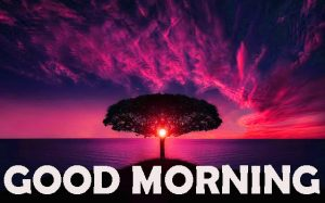 Good Morning Wishes Images Wallpaper Pictures HD Download
