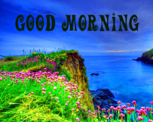 Beautiful Gud Mrng Images Photo Pictures Download & Share