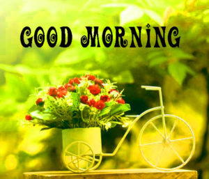 Gud Morning Pics Wallpaper Pictures Free Download