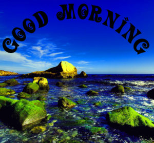 Good Morning 3d Images Wallpaper Pictures for Whatsapp