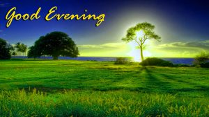 Good Evening Images Wallpaper Pictures for Whatsapp