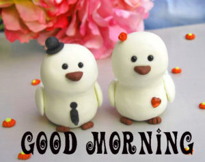 Beautiful New Cute Good Morning Wallpaper Pics Free Download