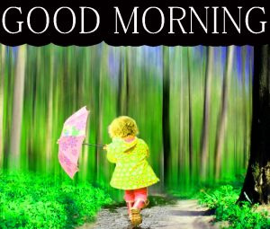 Beautiful New Cute Good Morning Images Wallpaper Pics Download