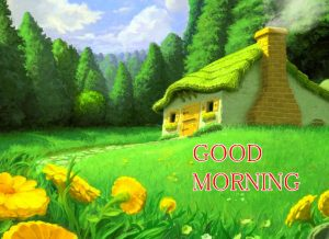 Gud / Gd mrng Images Photo free Download