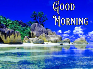 Nature Good Morning Image Wallpaper Download for Facebook