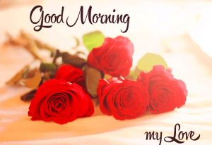 gud morning wallpapers Images Pics With Red Rose HD Download For Whatsaap