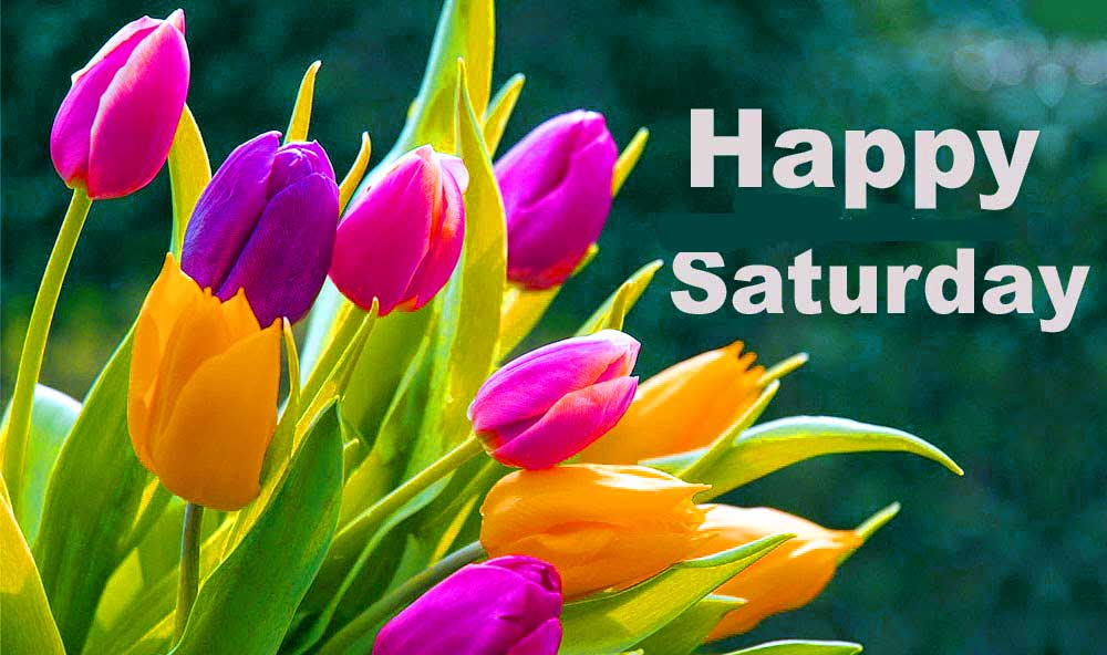 good morning saturday Images wallpaper Photo Pics Download For Whatsaap