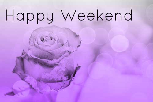 Flower Happy Weekend Quotes Images Photo Wallpaper HD Download For Whatsaap With Red Rose