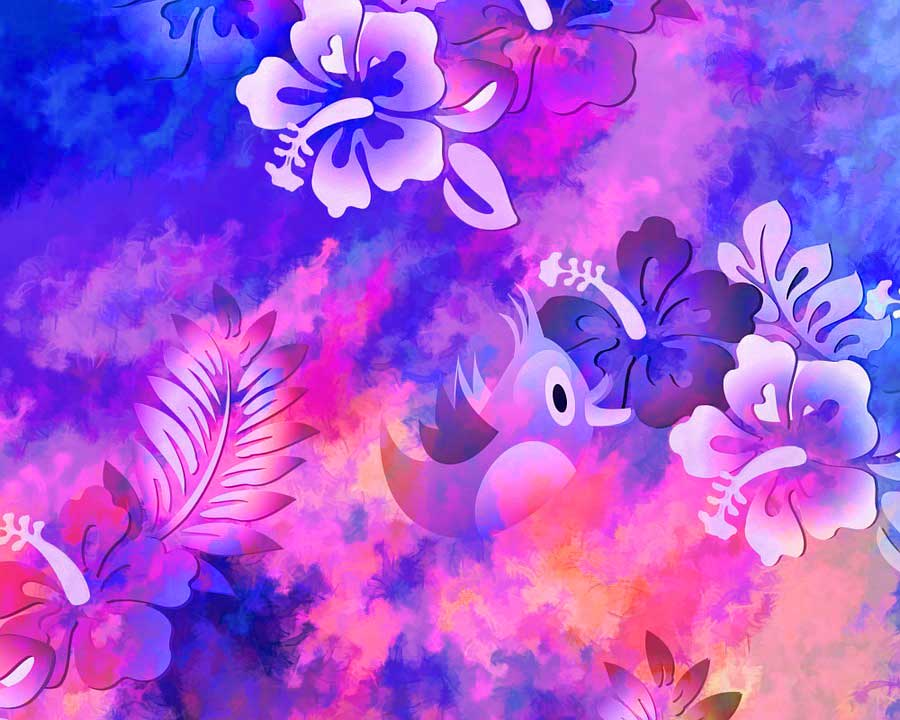 HD Flower Wallpaper