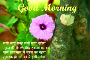 good-morning-picture-in-hindi