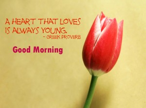 Top Love Good Morning Free Download