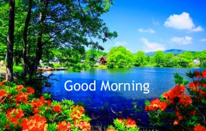 Nature Good Morning images Pics