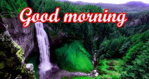 Beautiful Gud Mrng Images Photo Pics HD Download
