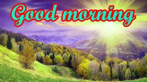 Good Morning Nice Pic Images Wallpaper Pics Download