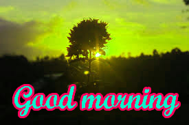 Good Morning Nice Pic Images Photo HD Download