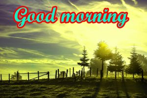 Good Morning Nice Pic Images Pics HD Download