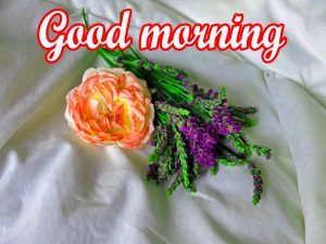 Very Beautiful Good Morning Images With Flower