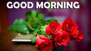 Good Morning Images Wallpaper Photo Pics With Red Rose