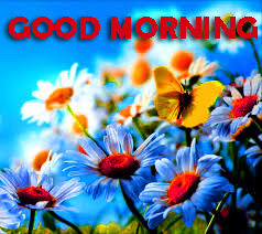 Good Morning Wishes Images Wallpaper Pics HD Download for Whatsapp DP