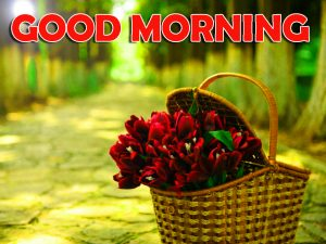 Red Rose Good Morning Wishes Images Pic Photo For Girlfriend