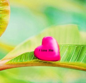 I love youWhatsapp DP Profile Images photo Pics Download