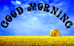 Gud Morning Pics Wallpaper Images for Whatsapp