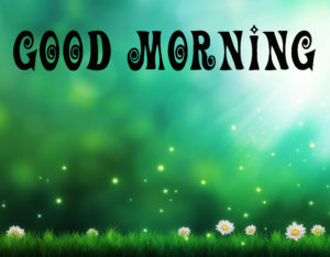 Good Morning Success Quotes In Hindi Wallpaper Pic for Whatsapp