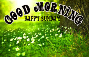 Sunday Good Morning Images Wallpaper Pics Download & Share