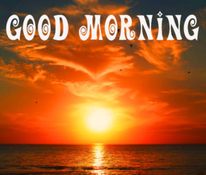 Good Morning My Sunshine Quotes Images Wallpaper Pics Free for Facebook