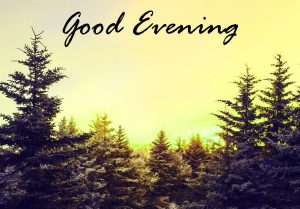 Good Evening Images Photo Pictures Download