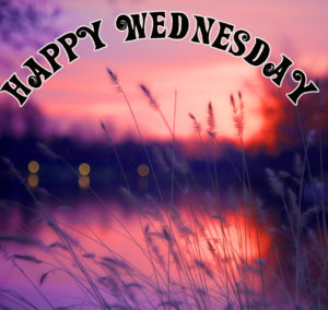 Wednesday Good Morning Wishes Images Wallpaper Pictures Download