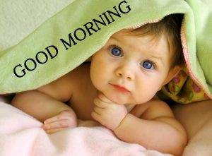 Beautiful New Cute Good Morning Images Wallpaper Pics for Whatsapp